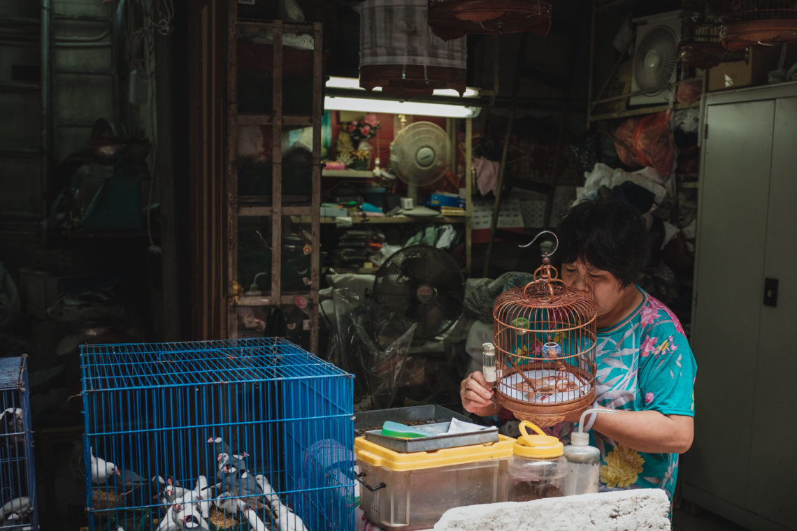Yuen Po Street Bird Garden and Market Vendor I - Hong Kong - Fuji X100F